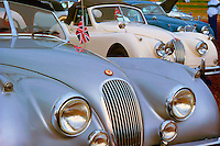 Detail of Vintage Cars