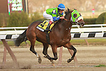 Redeemed with Edgar Prado aboard wins the Grade III Discovery Handicap for 3-year olds at 1 1/8 mile at Aqueduct Racetrack.  Trainer Dick Dutrow.  Owner Jay Em Ess Stables.