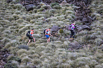 NELSON, NEW ZEALAND - APRIL 3: GODZone Adventure Race Day 2. Red Hills Richmond, Nelson. April 3, 2016. New Zealand. (Photo by: Evan Barnes/Shuttersport Limited)