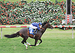 July 20, 2011.Mr. Commons ridden by Mike Smith approaching the finish line and winning the Oceanside Stakes on opening day, Del Mar thoroughbred Club, Del Mar California