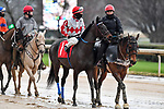 February 28, 2021: Chance to Shine #1 , ridden by Ken S. Tohill in the Bayakoa Stakes (Grade 3) for trainer Chris A. Hartman at Oaklawn Park in Hot Springs,  Arkansas. Ted McClenning/Eclipse Sportswire/CSM