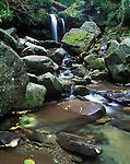 Grotto Falls, Great Smokey Mountains NP, TN, USA