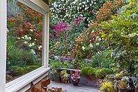 Magor Garden, Santa Cruz