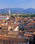 Tuscany, Italy:  Tiled roof tops of Lucca's city center with the Apuan Alps in the distance