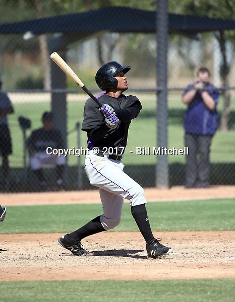 Daniel Montano - 2017 AIL Rockies (Bill Mitchell)