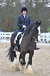 13/02/2016 - Team Dressage - Brook Farm Training Centre