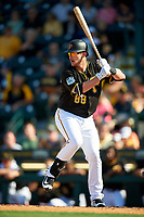 Pittsburgh Pirates Joey Terdoslavich (88) at bat during a Spring Training game against the Tampa Bay Rays on March 10, 2017 at LECOM Park in Bradenton, Florida.  Pittsburgh defeated New York 4-1.  (Mike Janes/Four Seam Images)