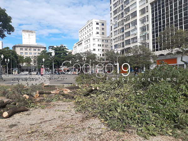 Campinas (SP), 27/02/2021 - Clima-SP - A árvore que caiu durante a chuva de ontem em Campinas, interior de São Paulo, no Largo do Rosário, começou a ser retirada na manhã deste sábado (27) por agentes da prefeitura.