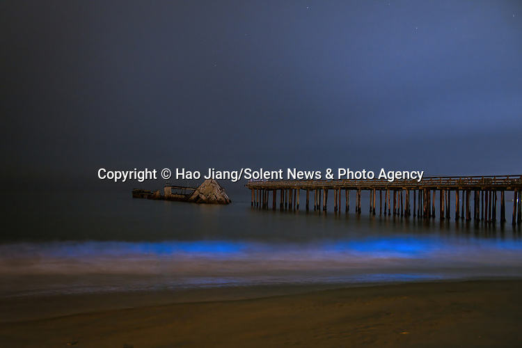 Pictured: The ocean is illuminated by bright blue bioluminescence as the Milky Way glows in the sky.   As the waves filled with phytoplankton crash against the shore the lights of the galaxy shine brightly above.