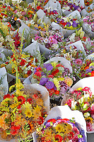 Flowers for sale at Lake Oswego Farmers Market. Oregon
