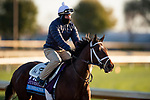November 2, 2020: Rombauer, trained by trainer Michael W. McCarthy, exercises in preparation for the Breeders' Cup Juvenile at Keeneland Racetrack in Lexington, Kentucky on November 2, 2020. Alex Evers/Eclipse Sportswire/Breeders Cup
