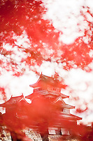 Matsumoto Castle behind red autumn Japanese maple leaves.
