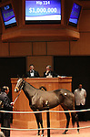 Hip #114 Her Smile consigned by Denali Stud sold for $1,000,000 to ADENA SPRINGS at the Fasig Tipton November Sale on November 6, 2011.