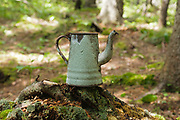 Hikers have put an artifact on display at an old logging camp location along the Zealand Valley Railroad (1884-1897) in the White Mountains, New Hampshire. The Appalachian Trail utilizes a portion of the old railroad bed. The removal of historic artifacts from federal lands without a permit is a violation of federal law.