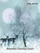 Isabella, CHRISTMAS LANDSCAPES, WEIHNACHTEN WINTERLANDSCHAFTEN, NAVIDAD PAISAJES DE INVIERNO, paintings+++++,ITKEBR126,#xl#