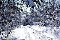 WT06-002b  Weather - snow covered road