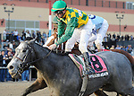 O'Prado Again (no. 8), ridden by Kent Desormeaux and trained by Dale Romans, wins the 98th running of the grade 2 Remsen Stakes for two year olds on November 26, 2011 at Aqueduct Race Track in Ozone Park, New York.  (Bob Mayberger/Eclipse Sportswire)