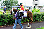 Isabella Sings(10) with Jockey Corey S. Nakatani aboard at  the Natalma Stakes at Woodbine Race Course in Toronto, Canada on September 13, 2014 with Jockey Patrick Husbands aboard.