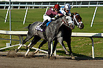 3 April 2011:  S.S. Stone ridden by Julien Leparoux (10) and Colizeo ridden by Ramon Dominguez (4) leads the pack around the fourth corner in the Skip Away Stakes at Gulfstream Park in Hallandale Beach, FL. (Photo by Max Lashin/Eclipse Sportswire)