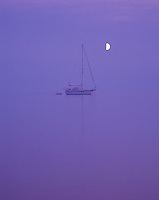 """Night Light""<br />