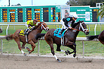 February 21, 2015: Street Babe approaching the first turn during the Mineshaft Handicap at the New Orleans Fairgrounds Risen Star Stakes Day. Steve Dalmado/ESW/CSM