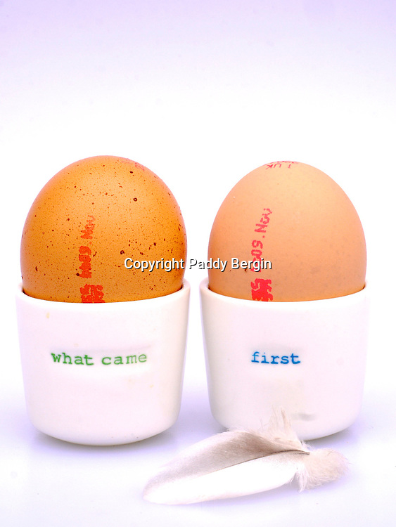 """The chicken or the egg causality dilemma is commonly stated as """"which came first, the chicken or the egg?"""" To ancient philosophers, the question about the first chicken or egg also evoked the questions of how life and the universe in general began.<br /> <br /> Stock Photo by Paddy Bergin"""