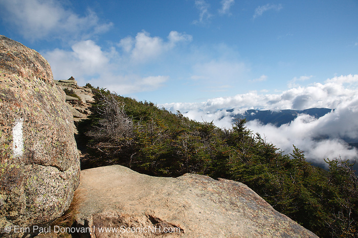 Appalachian Trail - Pemigewasset Wilderness from Franconia Ridge Trail near Little Haystack Mountain during the summer months in the White Mountains, New Hampshire USA.