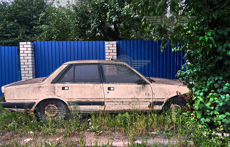 Grass grows around a decrepit car sitting in front of blue fence.