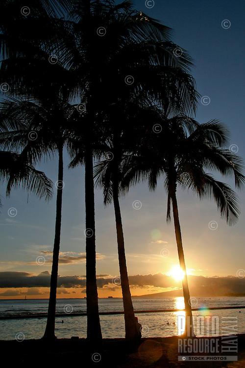 The sun sets behind palm trees on Waikiki Beach on Oahu