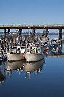 Gillnetters Fishing Boats, Astoria Marina, Oregon, USA.