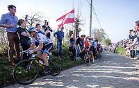 Matteo Trentin (ITA/Mitchelton Scott)<br /> <br /> 62nd E3 Harelbeke 2019 (1.UWT)<br /> Harelbeke – Harelbeke: 203,9km<br /> ©kramon