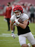 Arkansas tight end Nathan Johnson carries the ball Saturday, April 3, 2021, after making a catch during a scrimmage at Razorback Stadium in Fayetteville. Visit nwaonline.com/210404Daily/ for today's photo gallery. <br /> (NWA Democrat-Gazette/Andy Shupe)