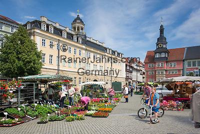 Germany; Free State of Thuringia, Eisenach: market square with Thuringia Museum - City Palace and city hall   Deutschland, Thueringen, Eisenach: Marktplatz mit Thueringer Museum - Stadtschloss und Rathaus