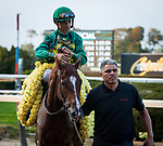 September 28, 2019: Code of Honor, ridden by John Velazquez, wins the 2019 running of the G1 Jockey Club Gold Cup at Belmont Park in Elmont, NY. Sophie Shore/ESW/CSM