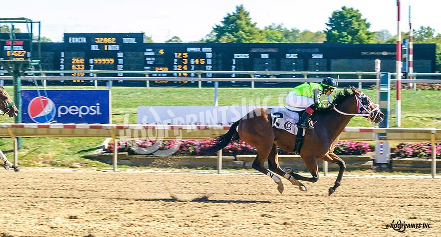 Padrino's Heart winning at Delaware Park on 10/5/19