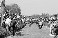 peloton rolling over the Holleweg cobbles<br /> <br /> <br /> 101th Ronde Van Vlaanderen 2017 (1.UWT)<br /> 1day race: Antwerp › Oudenaarde - BEL (260km)