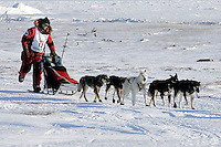Tuesday March 13, 2007   ----   Lance Mackey, the 2007 Iditarod champion with lead dogs Larry (grey) and Lippy