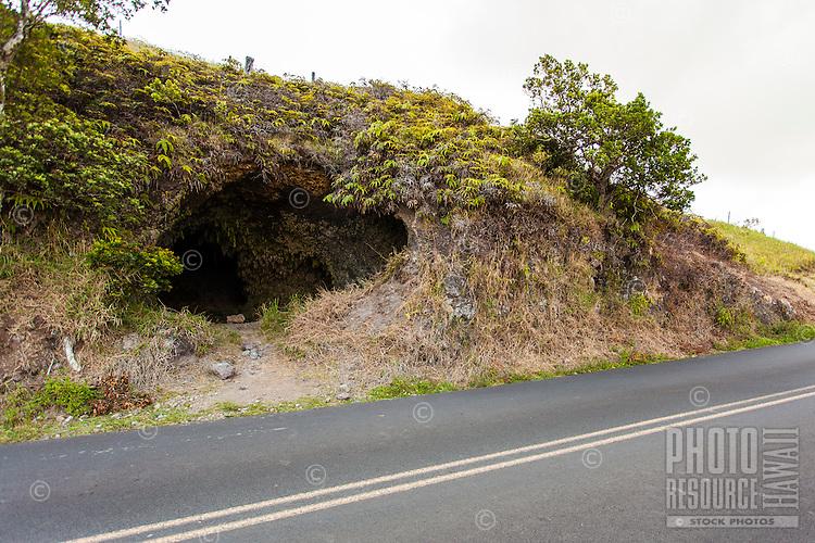 The entrance to Cave #3 along Old Mamalahoa Hwy., Big Island.