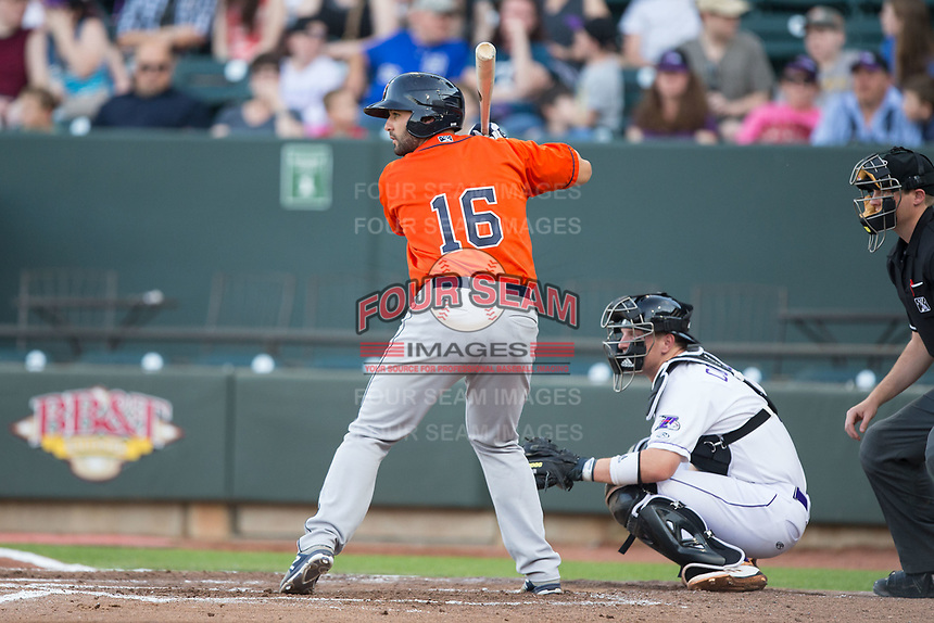 Anthony Hermelyn 16 of the Buies Creek Astros at bat against the Winston-Salem Dash at BB&T Ballpark on April 15, 2017 in Winston-Salem, North Carolina.  The Astros defeated the Dash 13-6.  (Brian Westerholt/Four Seam Images)