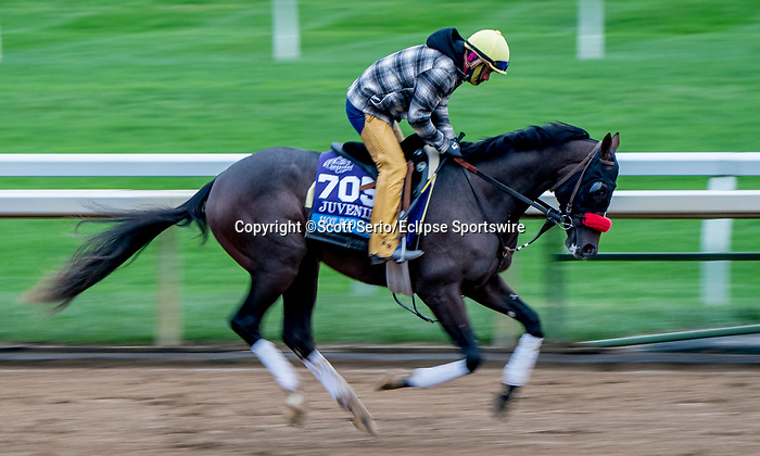 October 30, 2020: Hot Rod Charlie, trained by trainer Doug F. O'Neill, exercises in preparation for the Breeders' Cup Juvenile at Keeneland Racetrack in Lexington, Kentucky on October 30, 2020. Scott Serio/Eclipse Sportswire/Breeders Cup/CSM