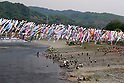 Koinobori flying carp windsock display in Sagamihara
