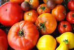Heirloom Tomatoes and Lemon  Squash