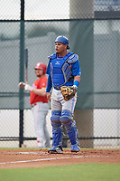 Toronto Blue Jays catcher Yorman Rodriguez (50) during an Instructional League game against the Philadelphia Phillies on September 30, 2017 at the Carpenter Complex in Clearwater, Florida.  (Mike Janes/Four Seam Images)