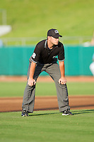 Third base umpire Michael Williamson during the Southern League game between the Mississippi Braves and the Tennessee Smokies at Smokies Park on July 22, 2014 in Kodak, Tennessee.  The Smokies defeated the Braves 8-7 in 10 innings. (Brian Westerholt/Four Seam Images)