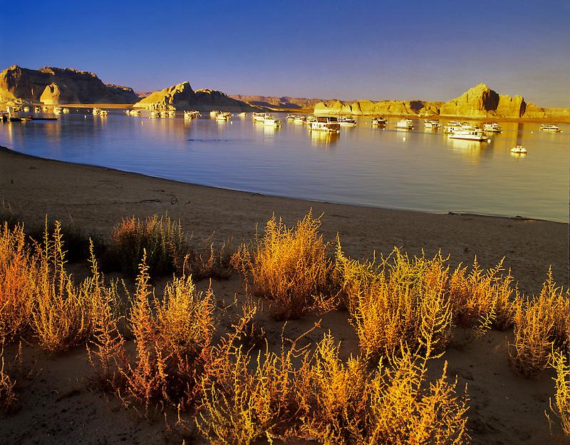 Boats at Wahweap Marina. Lake Powell, Utah