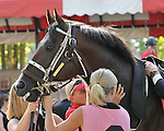 8.14.10 Telling in the paddock before the Sword Dancer Invitational