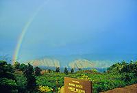 Rainbow over Waimea Canyon as seen from the Iliau Nature Loop