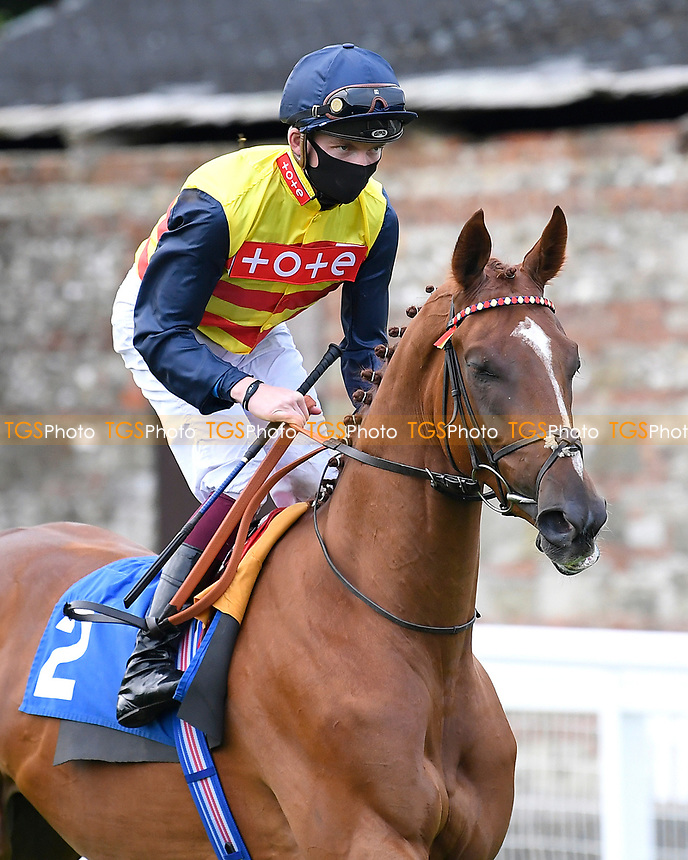Cadeau d'Or ridden by Rob Hornby goes down to the start of The British EBF Novice Stakes  during Horse Racing at Salisbury Racecourse on 11th September 2020