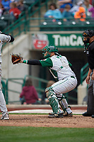 Fort Wayne TinCaps catcher Webster Rivas (8) gives a high target during a game against the Wisconsin Timber Rattlers on May 10, 2017 at Parkview Field in Fort Wayne, Indiana.  Fort Wayne defeated Wisconsin 3-2.  (Mike Janes/Four Seam Images)
