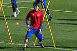 Spainsh David Silva during the training of the spanish national football team in the city of football of Las Rozas in Madrid, Spain. November 09, 2016. (ALTERPHOTOS/Rodrigo Jimenez)